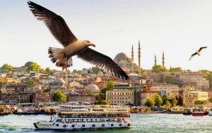 Стамбульские чудеса: между прошлым и будущим