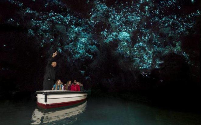 Светящиеся пещеры Вайтомо – мириады светлячков над подземной рекой