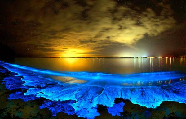 Свечение планктона у берегов Австралии