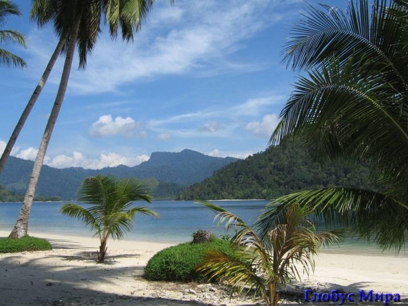 Пальмы, море...