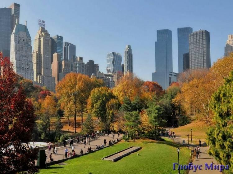 Золотая осень в Центральном Парке
