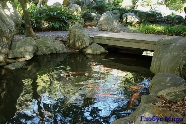 Сад Дружбы города Сиднея