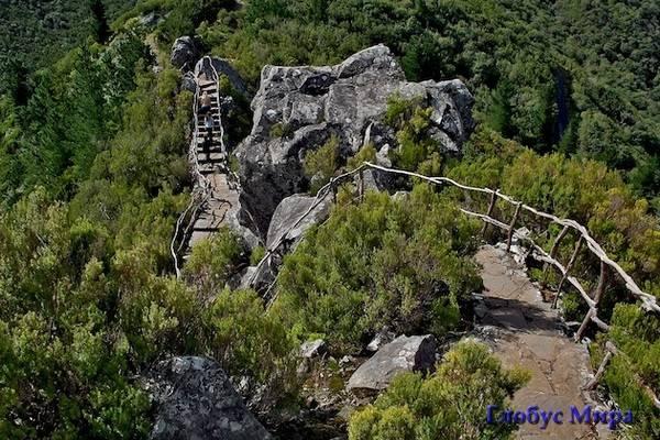 Утес Pico das Pedras