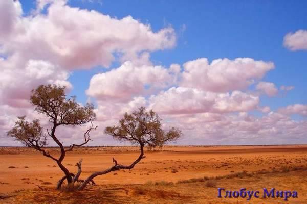Пустыня Симпсона