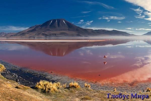 Боливия: лагуна Колорадо