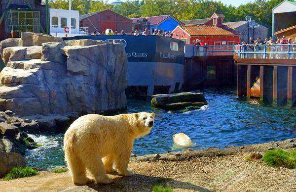Зоопарк в Ганновере