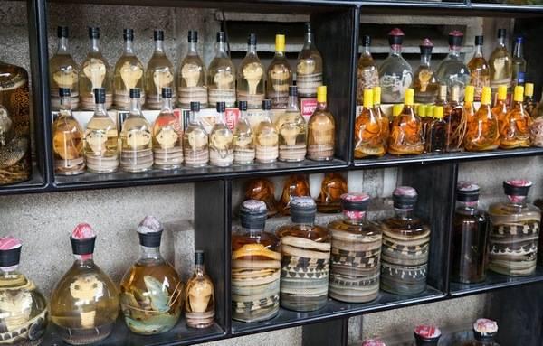 Магазинчик со змеиными товарами