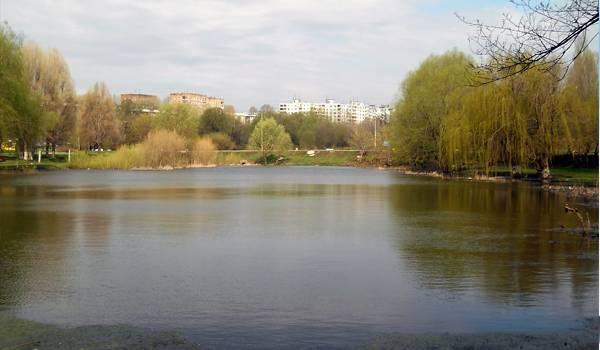 Воронежские озера умиротворяют любого