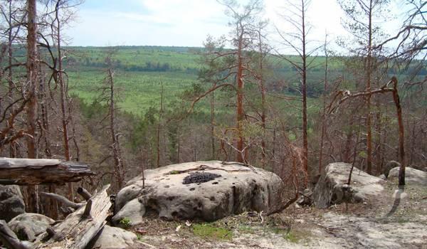 Каменные альпы
