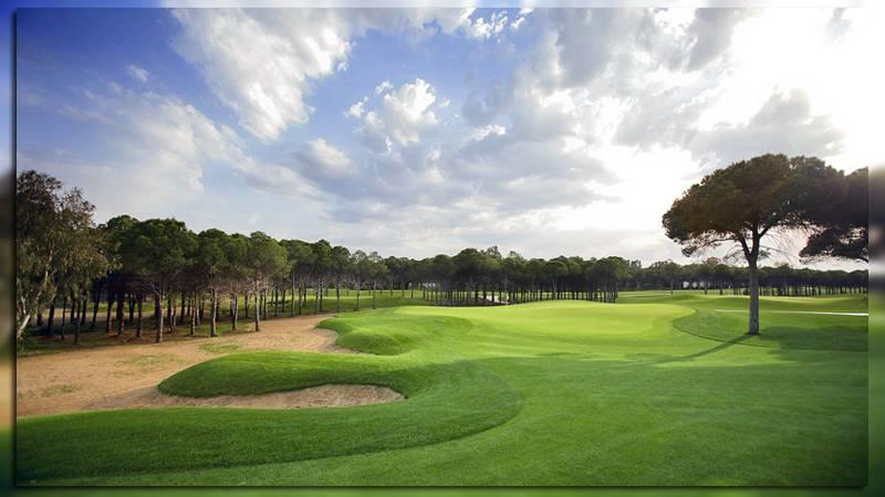 Элитные поля для гольфа