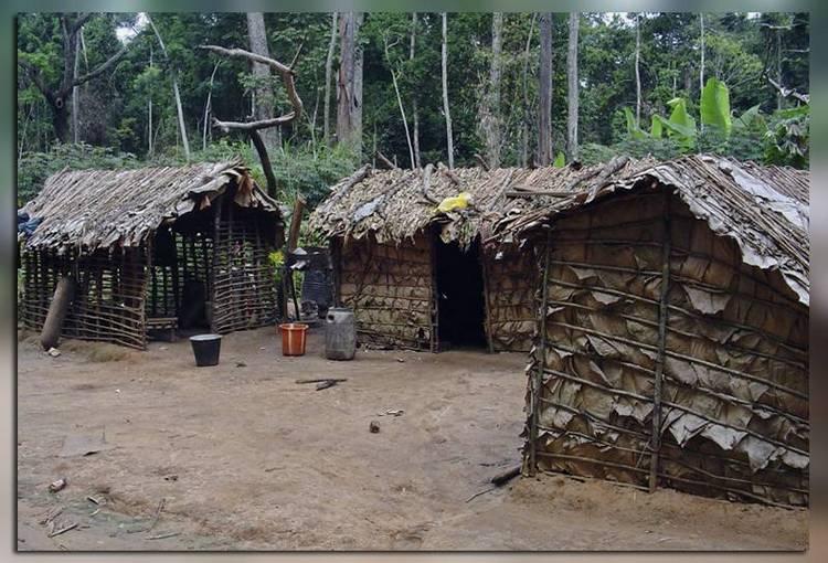 Деревня пигмеев
