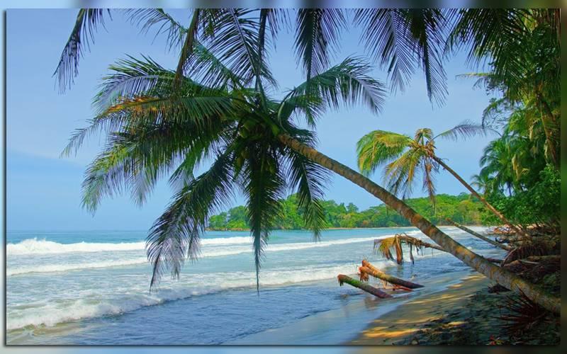 Пляж Punta Uva в Коста-Рике