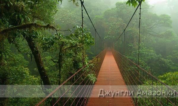 Джунгли Амазонки в Южной Америки