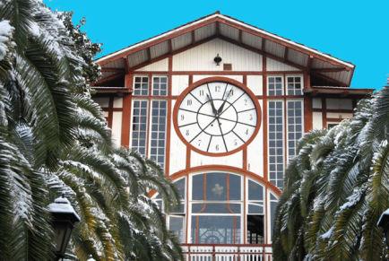 Новый год в Абхазии 2019: отели с программой, цены