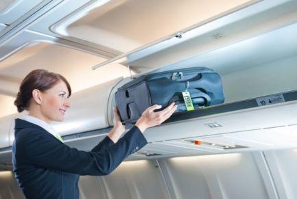 Что можно брать в ручную кладь в самолет в 2019 году