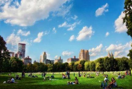 Нью-Йорк: моменты счастья в Центральном парке