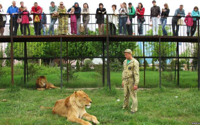Сафари-парк «Тайган» в Крыму, цены на 2018, отзывы посетителей