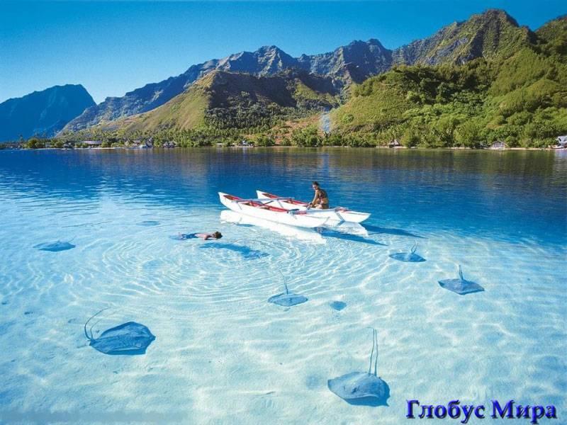 Достопримечательности Индонезии:Скаты в прозрачной воде
