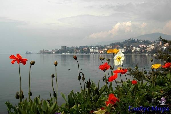 Берега Женевского озера