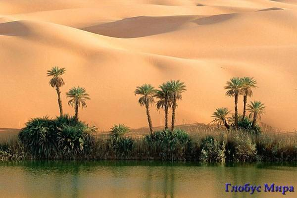 Тунис интересные места
