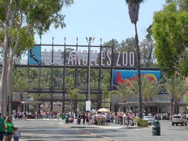 Лос-Анджелесский зоопарк