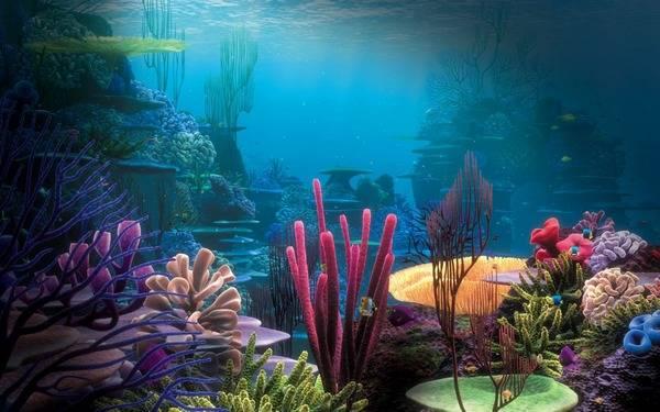Невероятный подводный пейзаж на Рифе