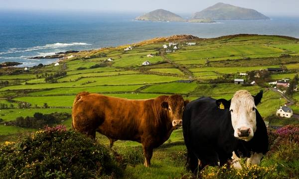 Ирландия достопримечательности топ-10