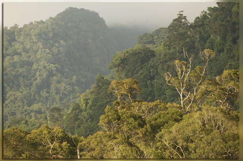 Национальный парк Лопе