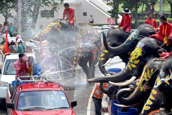 Водный фестиваль